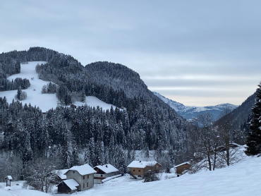 Le hameau des cornuts les gets alps living