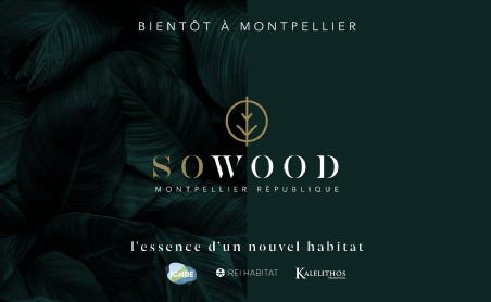 So wood montpellier icade promotion dcnm