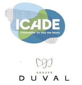 Emblem lille icade promotion dcnm