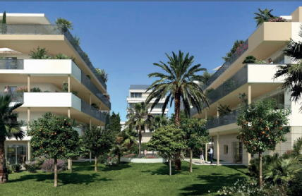 Palm riviera cannes honesty