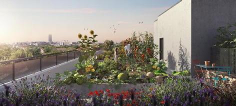 Les jardins de serena cachan edelis