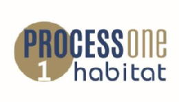 Process one